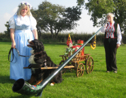 With Wendy and Homer, the Bernese Mountain Dog, BMDGB weekend, Peterborough, Cambridgeshire