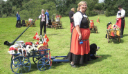With the Carting Group, Bernese Mountain Dog Club of Great Britain, Billingshurst, Kent